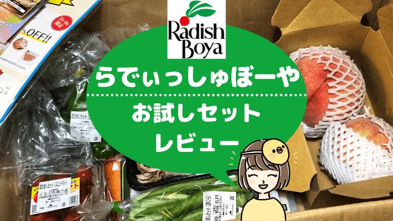 【野菜の宝箱】らでぃっしゅぼーやのお試しはどう?コスパ最高なのに勧誘も少なくて大満足!