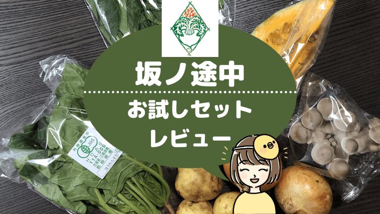 【旬の野菜を食べよう】坂ノ途中のお試しはどう?約6種類の野菜が食べれて勧誘は一切なかった!