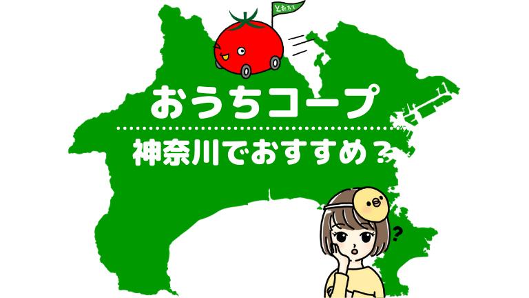 【便利すぎ!】神奈川県でおうちコープはおすすめ?毎週利用するヘビーユーザーの私の口コミ